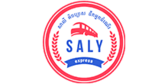 Large saly express logo